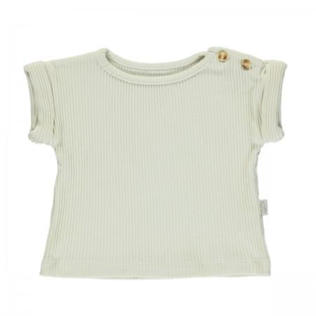 T-Shirt Côtelé écru